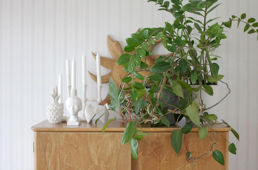 green_interior1