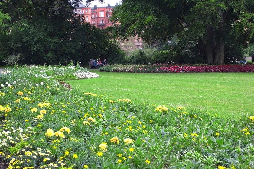 Djurgården flowers