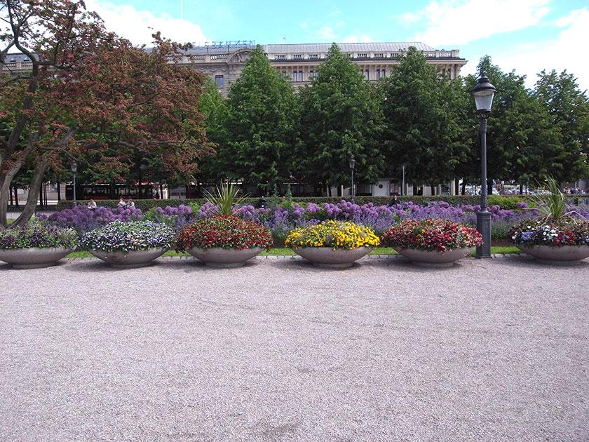 stockholm_flowers