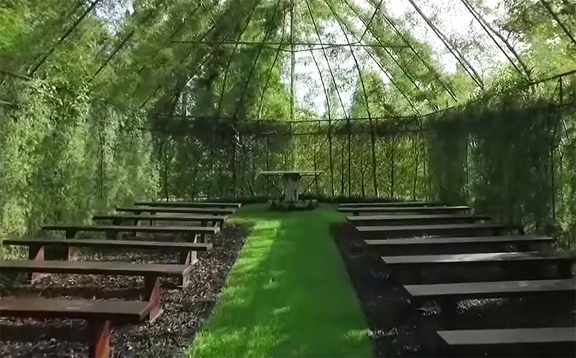 tree-church-new-zealand