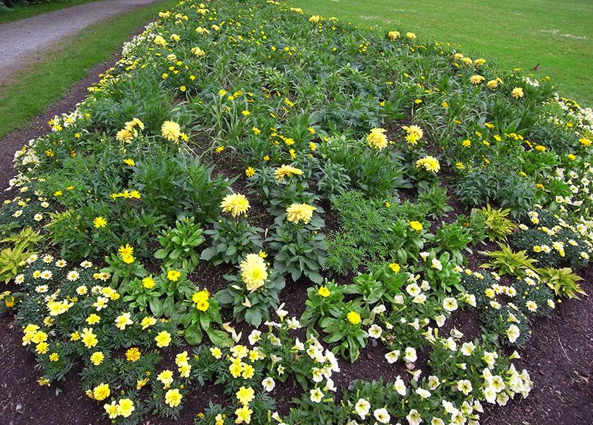 yellow_bench