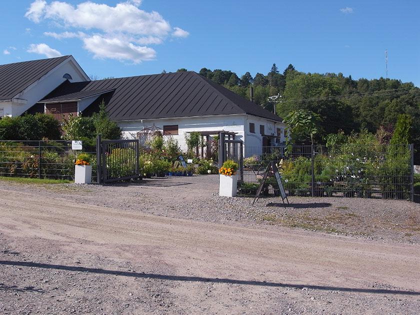 garden_shop_outside