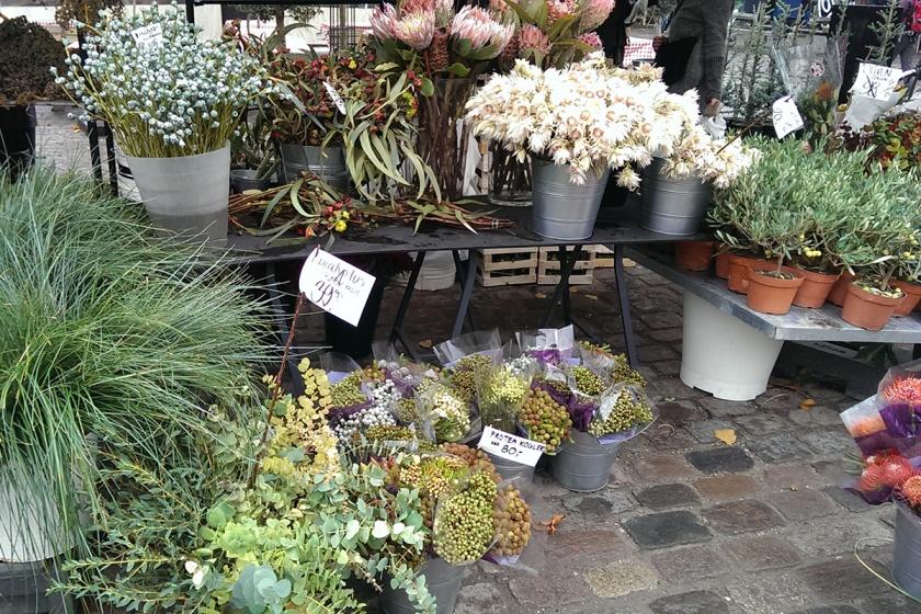 Copenhagen flowers and plants