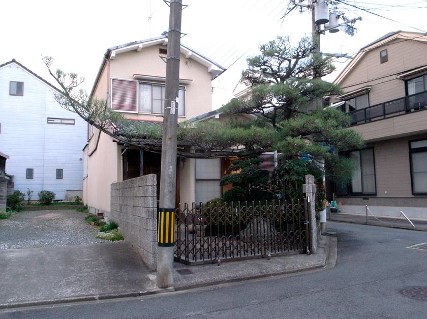street_garden11