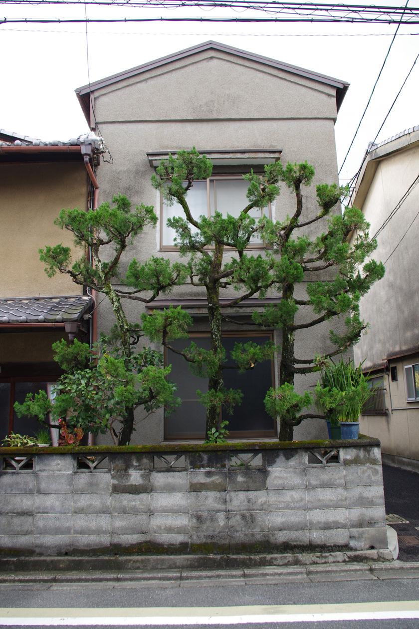 street_garden14