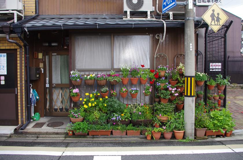 street_garden15