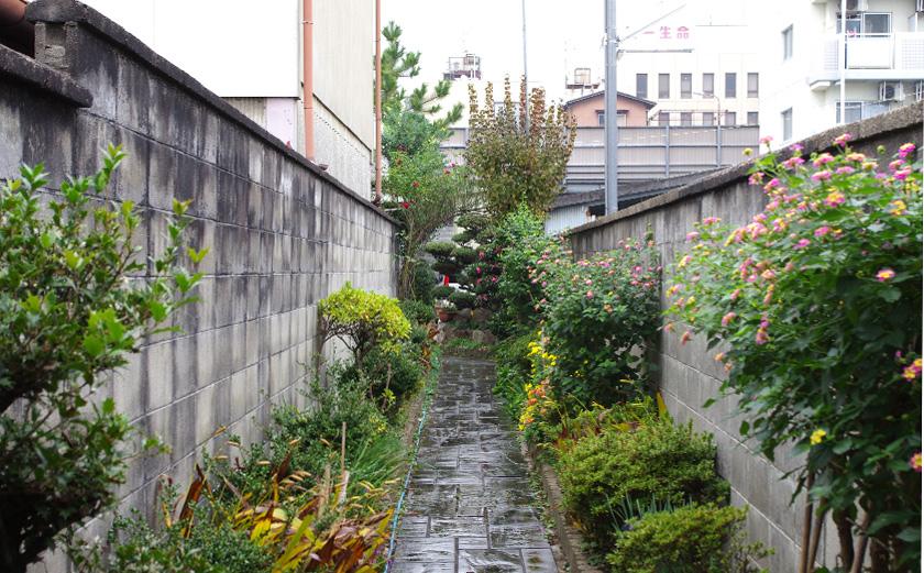 street_garden3