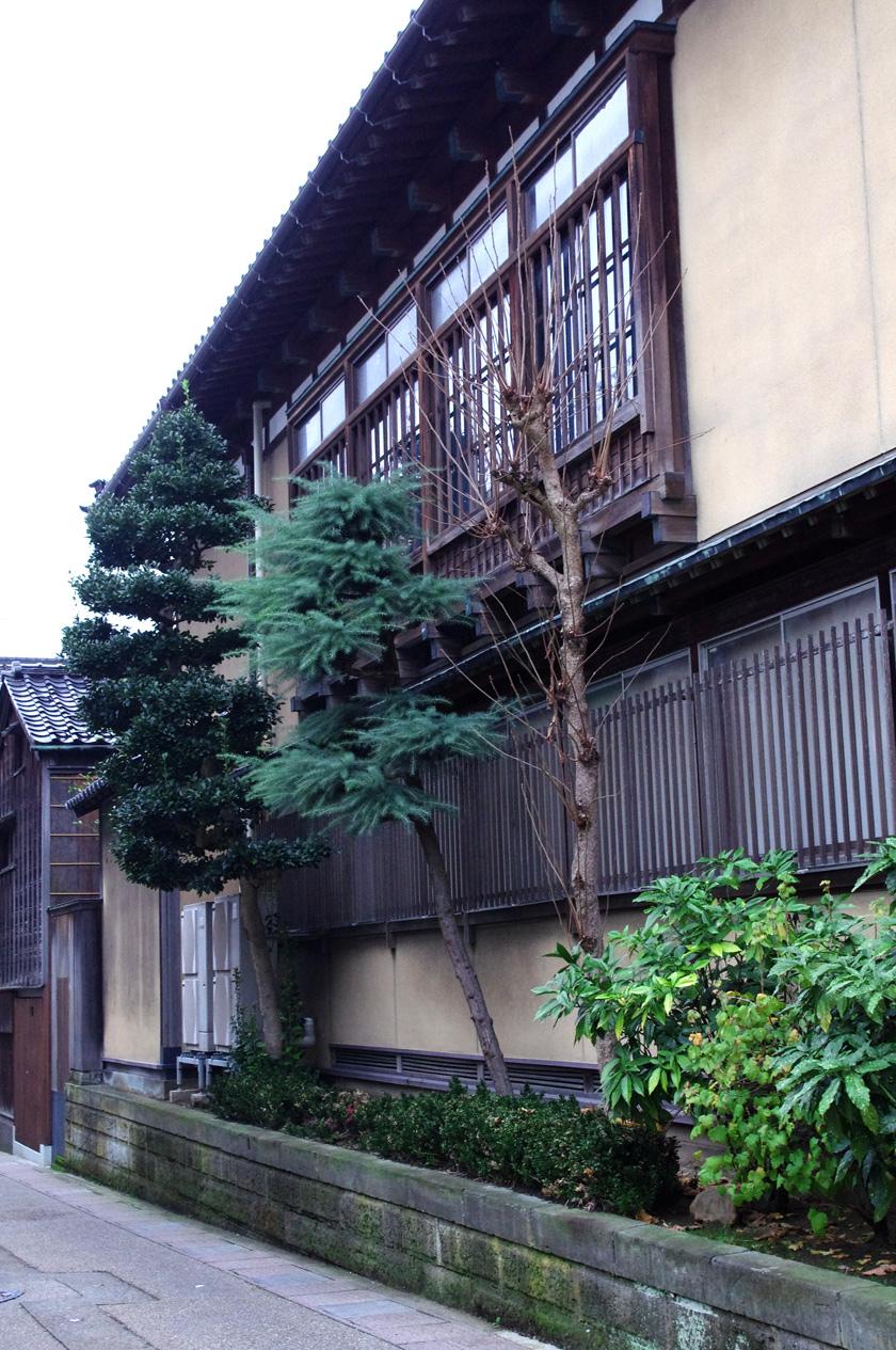 street_garden7
