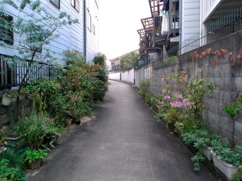 street_garden9