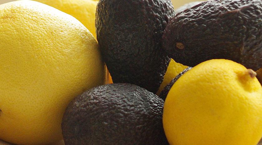 avocado_citrus