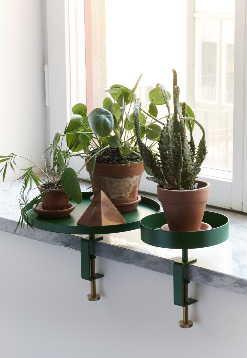 navet_planter3