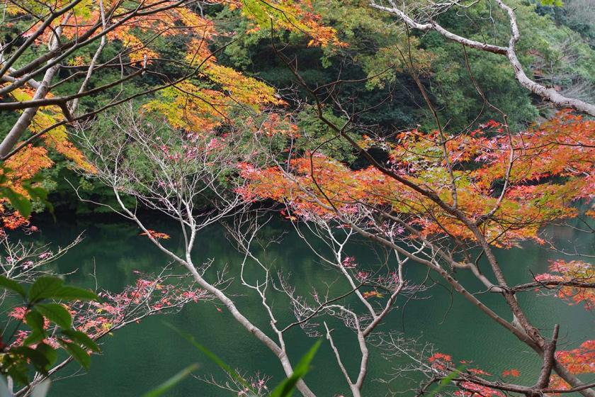 autumn1_featured
