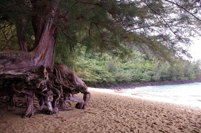 kalalau_beach