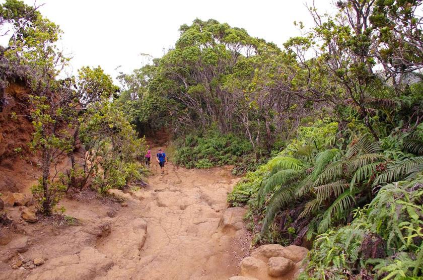 napali_trail_4