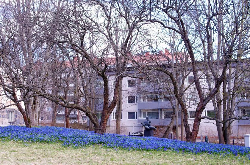 bluebellpark